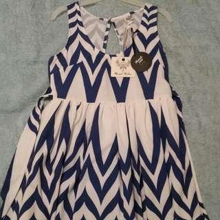 NWT Size 12 skater dress