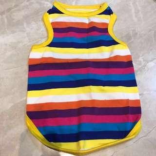 Rainbow pets clothing
