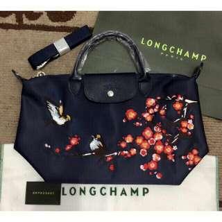 Longchamp bag (medium size)