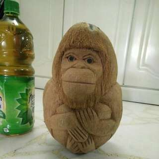 Monkey Coconut
