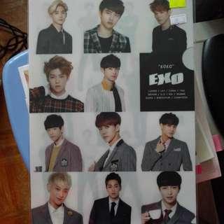 Exo file