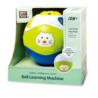 Ball Learning Machine