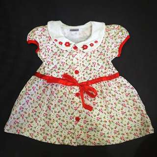 Baby Girl Floral Dress 224-0019