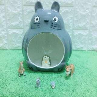 🚚 龍貓陶瓷窩