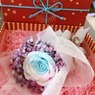 Rainbow Rose with baby breath