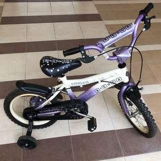 Aleoca Purple Children Bicycle