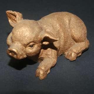 Miniature Display Pig