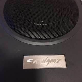 """AMPIified SUbwoofer 10"""" 600max"""