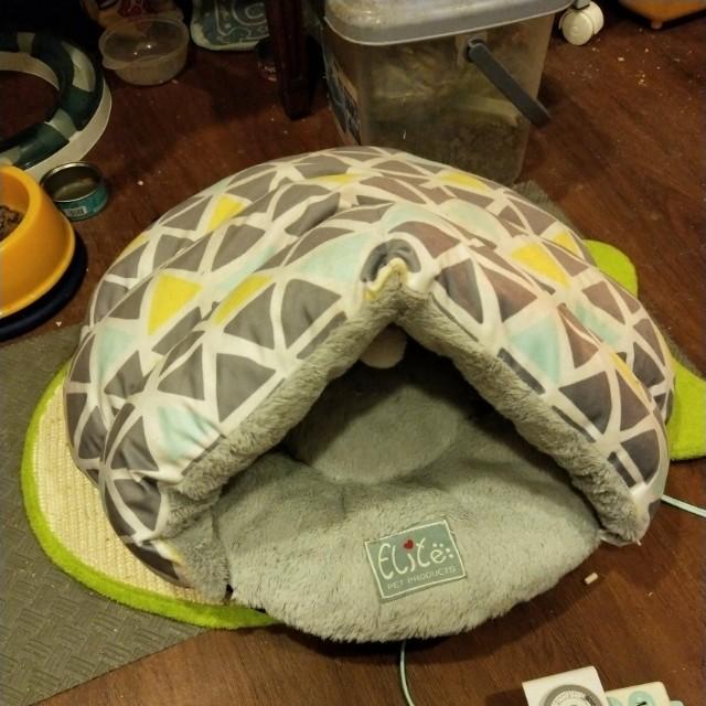 貓咪不愛的睡窩