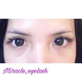 Miracle eyelash