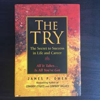 The Try By James Owen