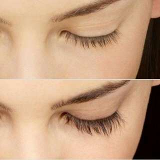 Extreme Eyelash Growth Serum (10 ml) INSTOCK