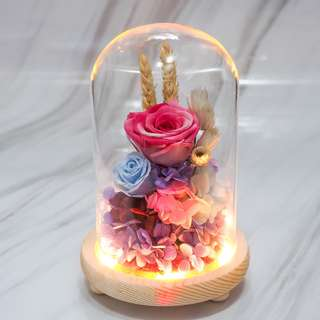 Two-Toned Pink Preserved Rose in A Glass Dome - OOS