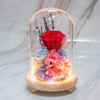 Red Preserved Rose In A Glass Dome - OOS