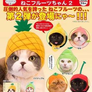 🚚 貓咪頭套扭蛋20彈 (水果篇)