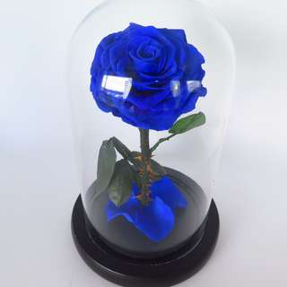 29thFebruary Preserved Flower - The Enchanted Rose (Blue)  | Valentine's Day | Birthday Present | Gift Box | Rose | Wedding | BNIB |