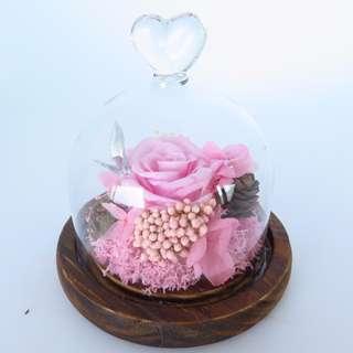 Preserved Flower - Glass Dome - Little Love Jar (Pink)  | Valentine's Day | Birthday Present | Gift Box | Rose | Wedding | BNIB |