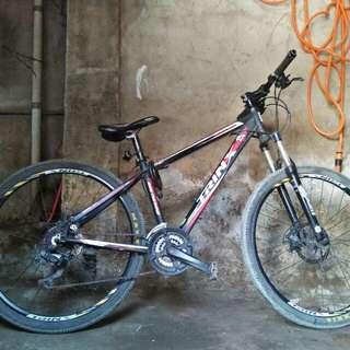 Mountain bike (negotiable)