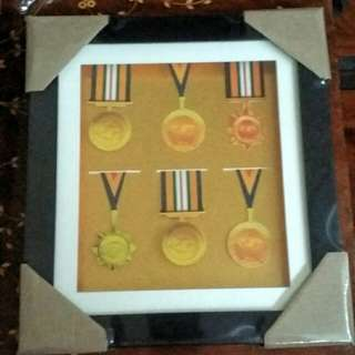 Shadow box/ frame for medals