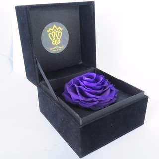 Preserved Flower - Gift Box - I Love You (Purple) | Valentine's Day | Birthday Present | Gift Box | Rose | Wedding | BNIB |
