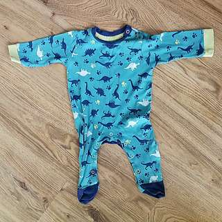 Poney Baby Sleepsuit Dinasour 6-12