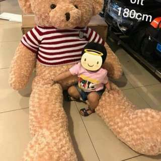 Teddy Bear with Sweater Size 6 ft.