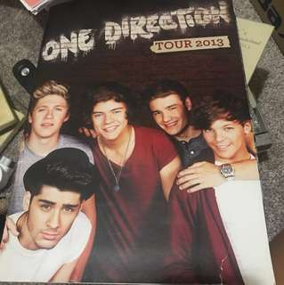One Direction 2013 Tour book