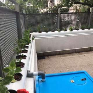 Hydroponic custom made indoor / outdoor automatic systems