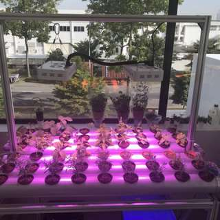 Hydroponic custom made automatic indoor / outdoor systems