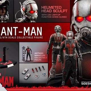 Hot Toys Ant Man
