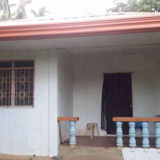 house and lot for sale in samal