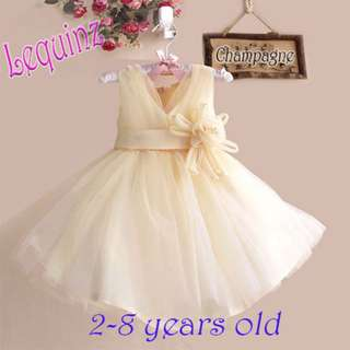 Champagne Wedding Dress Flower Girl Dress Birthday Party