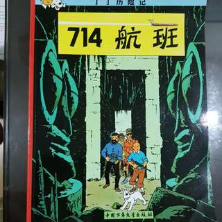 Adventures of Tin Tin in Chinese