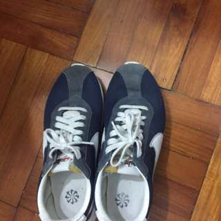 Nike sb us9.5