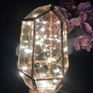 Terrarium Fairy Lights