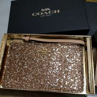 Coach brand new pouch in gift box