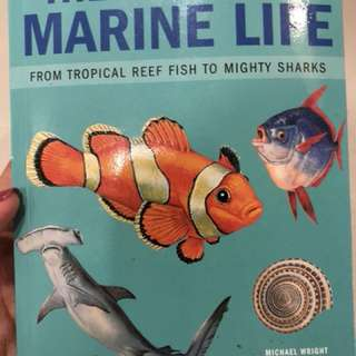 The World of marine life