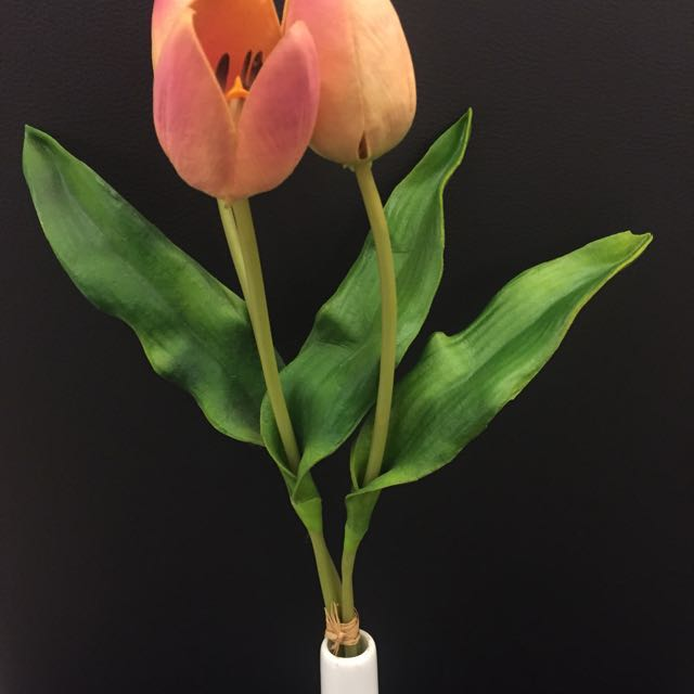 Artificial tulips with white case
