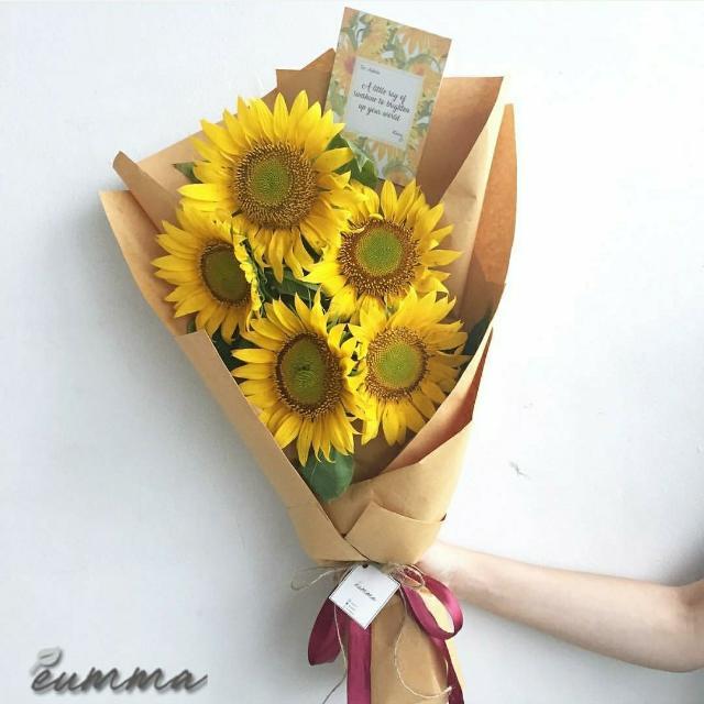 Fresh Sunflower Bunga Matahari Asli