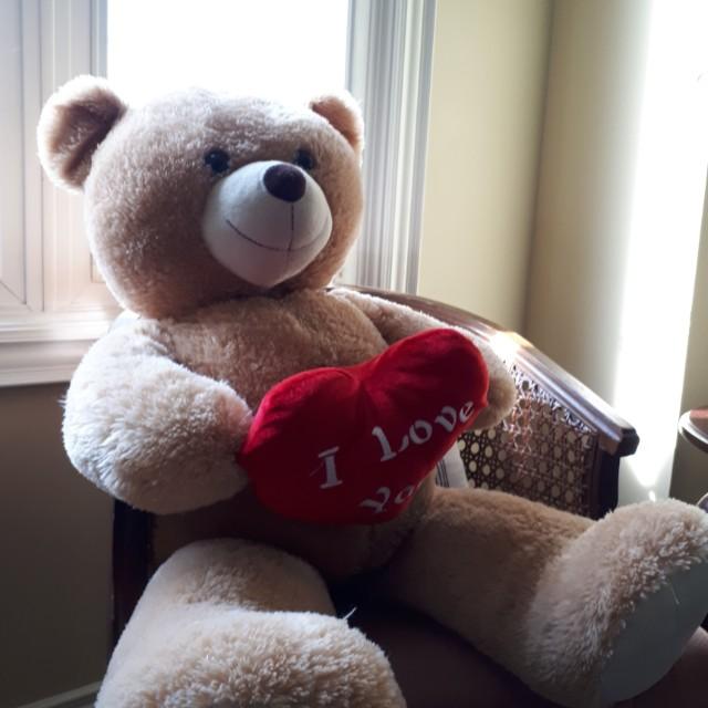 Valetines day Bear