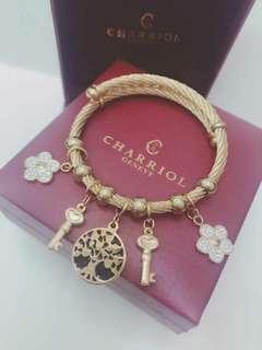 Chariol bling bangle