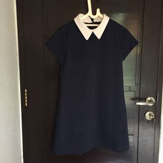 Collar Navy Dress