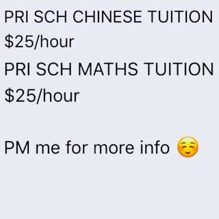 PRIMARY SCHOOL MATHS/CHINESE TUTOR (1 to 1)