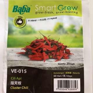 Chili padi seeds