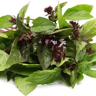 Organic Seeds - Sweet Cinnamon Basil