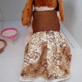 💥Glossy gold dress for pet