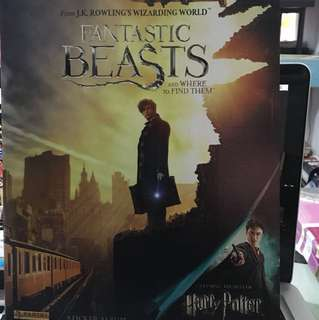 Harry Potter Fantastic Beasts and Where to Find Them sticker book
