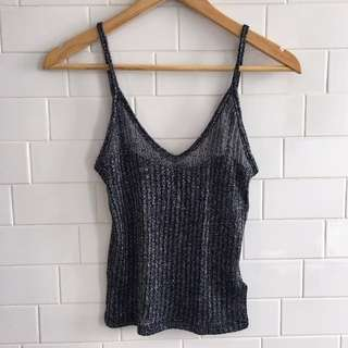 Shimmery Crop Top