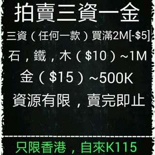 王國紀元三資一金(香港支付寶)付款