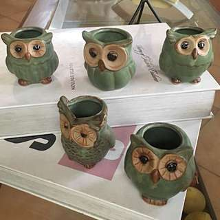 Creative Mini Owl Pots